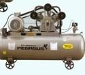 Máy nén khí một cấp PEGASUS TMV120/8
