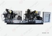 Máy nén khí Piston 2-81SH-15350