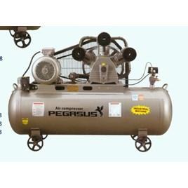 Máy nén khí một cấp PEGASUS TMW2000/8
