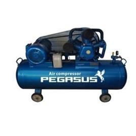 Máy nén khí Pegasus TM-W-0.9/8-330L