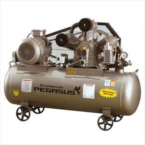 Máy nén khí một cấp PEGASUS TMV250/8 hinh anh 1
