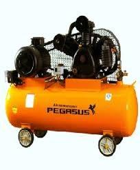Máy nén khí một cấp PEGASUS TMW-0.9/7 hinh anh 1