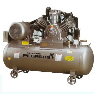 Máy nén khí một cấp PEGASUS TMW1000/8 hinh anh 1