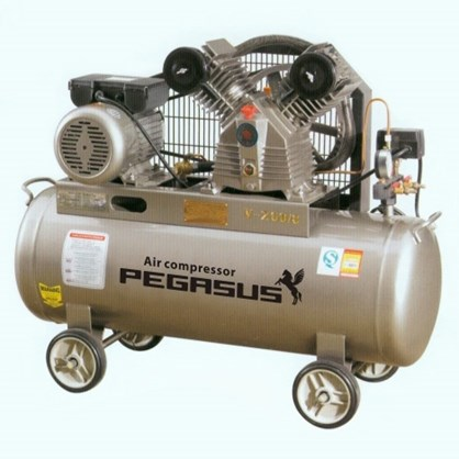 Máy nén khí một cấp PEGASUS TMW1600/12.5 hinh anh 1