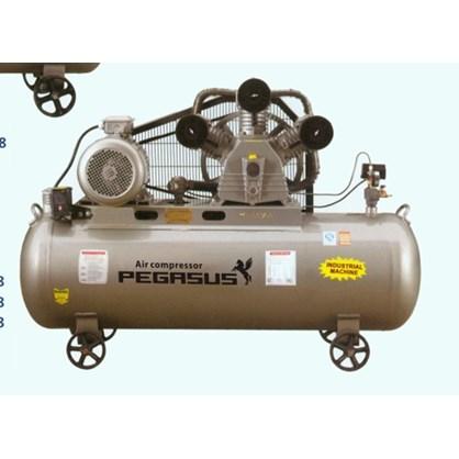 Máy nén khí một cấp PEGASUS TMW2000/8 hinh anh 1