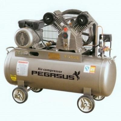 Máy nén khí Pegasus TM-V-0.12/8-70L hinh anh 1