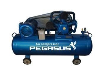 Máy nén khí Pegasus TM-W-0.9/8-330L hinh anh 1